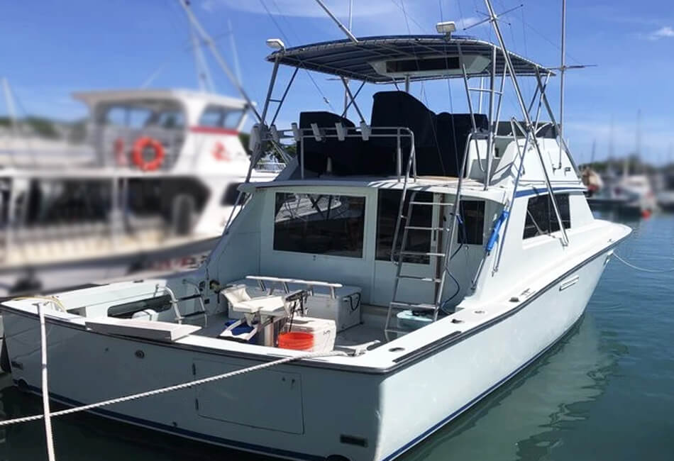 38 Ft Bertram Sportfisher